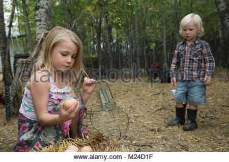 Curious, blonde brother and sister gathering fresh eggs - Stock Photo