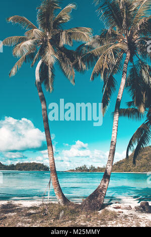 Two palm trees on the beach on a tropical island overlooking a tranquil azure blue bay and headland in a concept - Stock Photo