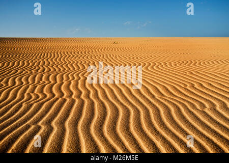 a view of the wind ripples on the sand dunes of Corralejo, Fuerteventura, in the Canary Islands, Spain - Stock Photo