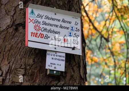 Herbst im Nationalpark Harz - Stock Photo
