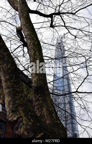 A different or unusual view of the shard office building in central London Bridge, Southwark. Viewpoint with trees - Stock Photo