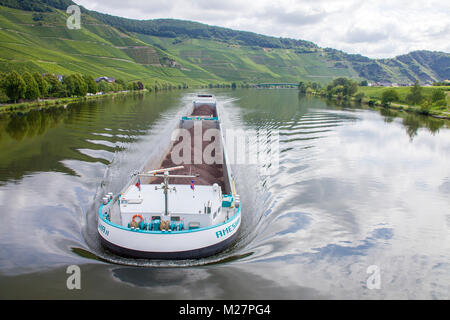 Barge on Moselle river at Piesport, Moselle river, Rhineland-Palatinate, Germany, Europe - Stock Photo