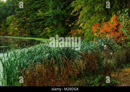 Lake Basile _ Simsbury, Connecticut, USA - Stock Photo