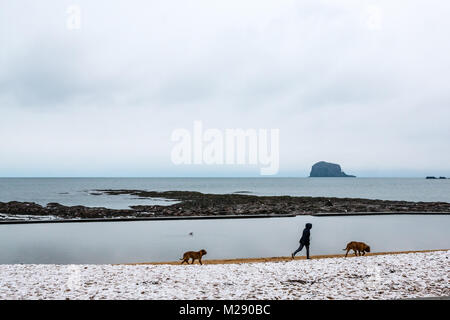 North Berwick, East Lothian, Scotland, United Kingdom.  A cold morning with snow on East beach in front of the Bass - Stock Photo