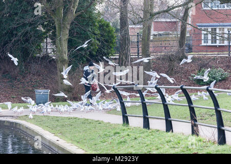 Northampton, U.K. 6th Febuary 2018. Weather. A very cold and grey morning in Abington Park as a man wrapped up warm - Stock Photo