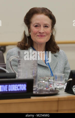 New York, NY, USA. 6th Feb, 2018. United Nations, New York, USA, February 06 2018 - Henrietta H. Fore, new UNICEF - Stock Photo