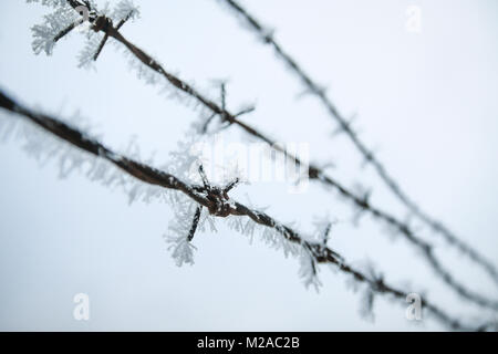 A detail picture of the barbed wire with frost on it during the cold winter day. - Stock Photo