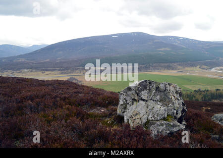 Looking Towards the Scottish Mountain Corbett Morrone/Morven from above the Linn of Quoich, Cairngorms National - Stock Photo