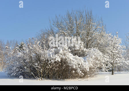 Snow-covered Moscow. Landscaped park after heavy snowfall in snow. Winter beautiful landscape - Stock Photo