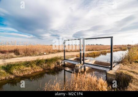 gate in a watering channel, Ebro Delta, Catalonia, Spain - Stock Photo