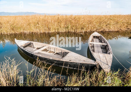 Canoes in a watering canal, Ebro Delta, Catalonia, Spain - Stock Photo