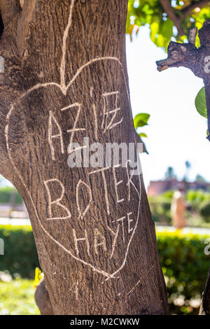 Names carved in a love heart on a tree trunk in Koutoubia Gardens, Marrakesh, Morocco - Stock Photo