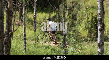 Kittredge, Colorado - A mountain biker on the Bear Creek Trail. - Stock Photo