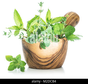 Different fresh herbs in the wooden mortar. - Stock Photo