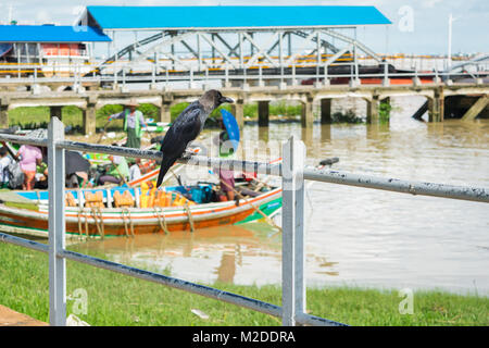 A black large billed crow, resting on a white railing next to Botahtaung jetty bridge and boats, Yangon, Myanmar, - Stock Photo