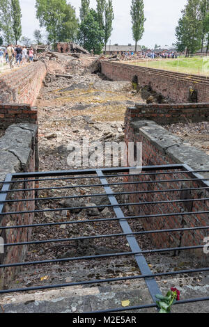 Remains of Gas Chamber, Birkenau Concentration Camp, Poland - Stock Photo