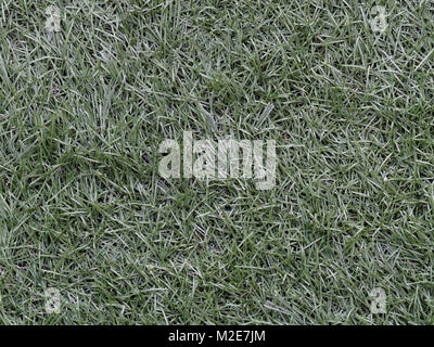 Green astroturf for soccer used as background in sport concept - Stock Photo