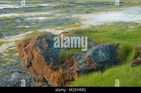 Low tide on the St-Lawrence river - Stock Photo