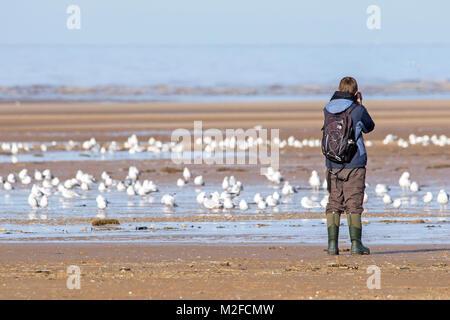 Birdwatching, or birding, birders, wildlife observation binoculars, scopes, optics, tripods at Southport, Merseyside. - Stock Photo