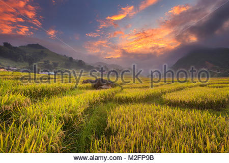 Aerial view of rice field on terraced of Mu Cang Chai, rice fields prepare the harvest at Northwest Vietnam.Vietnam - Stock Photo