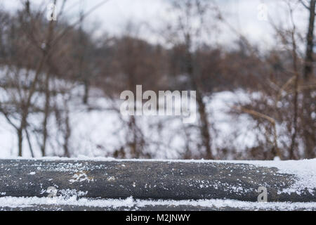 parapet of Snow bridge in new york, central park. - Stock Photo
