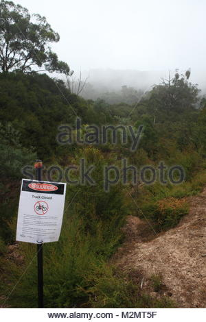 Closed MTB Single Track - portrait format - Stock Photo