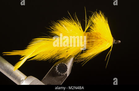 Yellow Fore & Aft Bass Fly - unknown Hook: ring-eye bass hook. Size No.4 Tail: two saddle hackle feathers, dyed - Stock Photo