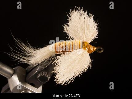 Bass Houn - Chenille Body - unknown  Hook: ring-eye bass hook. Size No.2 - Stock Photo