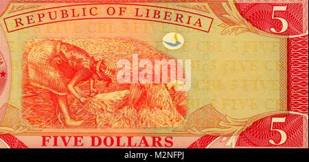 Liberia 5 Five Dollar Bank Notes - Stock Photo
