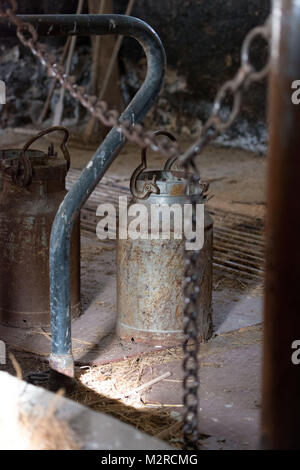 old milk churn in a cowshed - Stock Photo