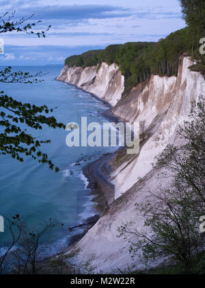 Chalk cliff in the early morning, Jasmund National Park, Rügen, Mecklenburg-Western Pomerania, Germany - Stock Photo