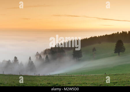 view from the Schauinsland over the Rhine plain at fog, Black Forest, Baden-Wurttemberg, Germany - Stock Photo