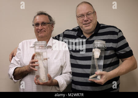 Prof. Nimrod Rosen, head of orthopedic ward, Haemek hospital and Prof. Efraim Tzur, Scientific Adviser of Bonus - Stock Photo