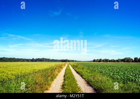 Straight Rural path through green grassland against blue sky, peaceful scene - Stock Photo