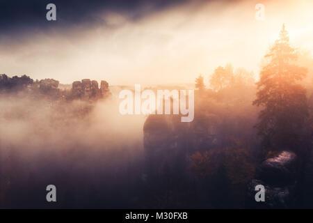 A misty morning in the Elbe Sandstone mountains near Rathen and the Bastei bridge - Stock Photo