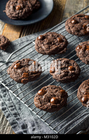 Homemade Dark Double Chocolate Chip Cookies Ready to Eat - Stock Photo