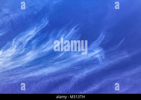 Long, wispy white tendrils of Cirrus uncinus clouds stream upward into a blue sky. - Stock Photo