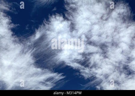 A tangle mix of cirrus and cirrostratus clouds float against a dark blue sky. - Stock Photo