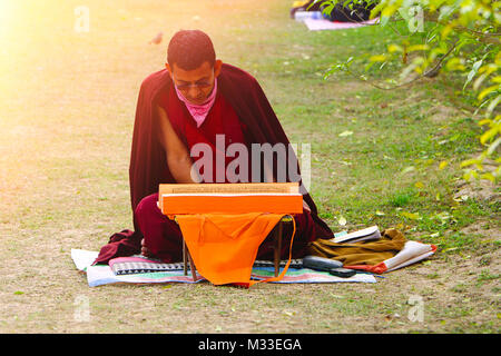 Buddhist Monk reading Holy book, Sarnath, Varanasi, Uttar Pradesh, India - Stock Photo