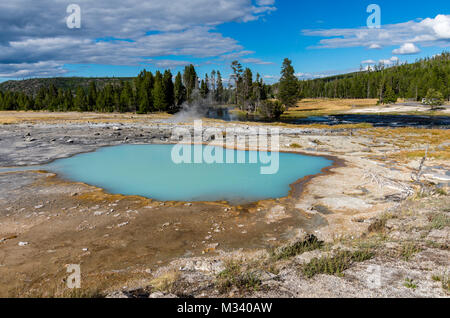 Black Opal Pool in Biscuit Basin.  Yellowstone National Park, Wyoming, USA