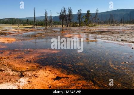Firehole River, Yellowstone National Park, Wyoming, United States - Stock Photo