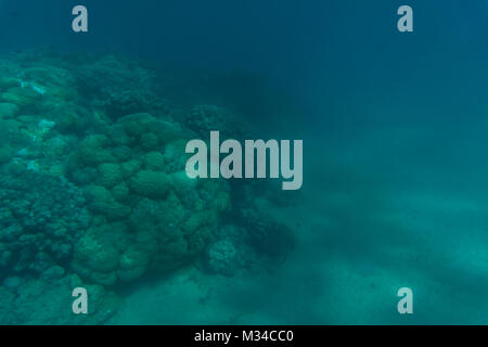 Beautiful seabed background, gorgeous sea bottom through transparent blue water, travel and vacation concept - Stock Photo