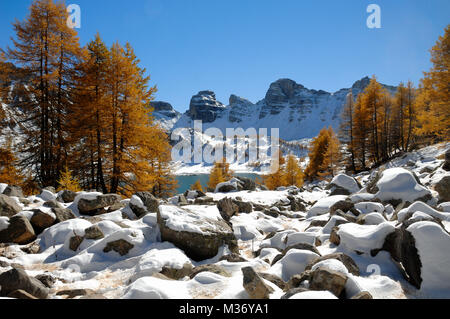 Golden Larches and Winter Snow at Lake Allos in Mercantour National Park in the French Alps Alpes-de-Hautes-Provence - Stock Photo