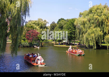 Tourists riding and enjoying Swan boats on the lake, Public Garden in Boston. The boats have been in operation since - Stock Photo