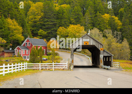 Scenic colorful yellow autumn trees surround old wood covered bridge by rural red house St Martins Bay of Fundy - Stock Photo