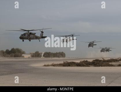 UH-60 Black Hawk helicopters take off in unison carrying distinguished visitors after Army Day demonstrations, Feb. - Stock Photo