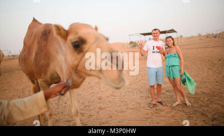 Girl and the guy with camel. Desert in Abu Dhabi, United Arab Emirates. - Stock Photo