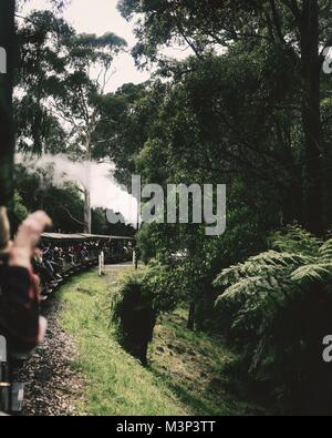 A view from the Puffing Billy train, the oldest railway in Australia - Stock Photo