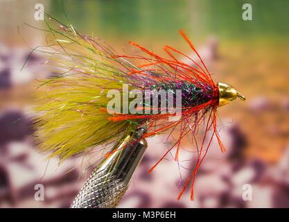 Wonderbugger marabou streamer fishing fly - Stock Photo