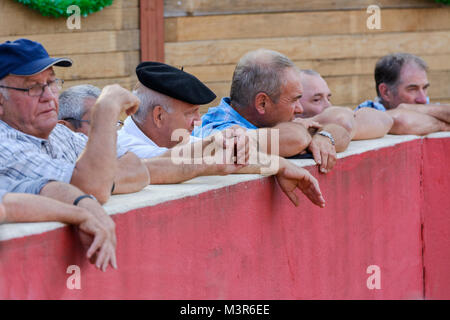 Spectators at a Course Landaise competition - a humane form of bullfighting involving dodging and leaping over wild - Stock Photo